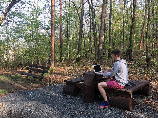 Práce v lese pod Kaňkem